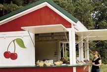 Kiosque fruits