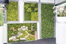 Showroom kunstplanten en plantenbakken
