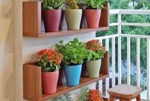 Terraza y balcón y jardin