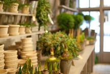 garden ☐ potting shed / by Philip