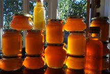 About Honey / A Collection of Honey related articles aorund the web