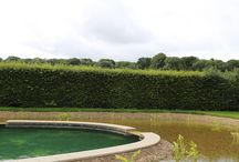 Natural filtration swimming pool / Natural filtration swimming pool execution including ground works, drainage installation, bespoke York stone coping, fitting and bulldozing.  Designed by Philippa O'Brien Garden Design in conjunction with Tim Gunnings of Mountain Pools.