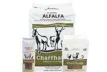 Getting Started With Goats / Some of the things we recomend to first time goat owners who buy goats from us.
