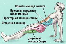 Йога и фитнес