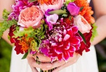 Mariage / Fleurs colores