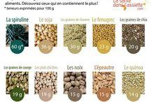 protéines végétales épices