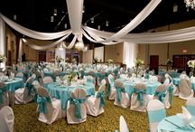 Rental and Venue / by Audrey Randles