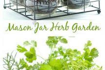 Herberg Garden