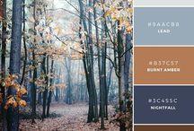 Color Inspire: Masculine