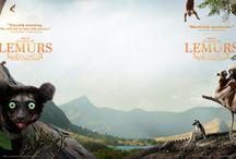 Island of Lemurs: Madagascar – Film