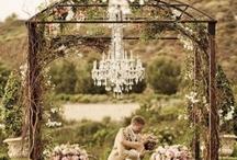 weddings / by Cindy Shoemake