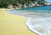 HalkidikiTravel.com - Kalamitsi beach in Halkidiki