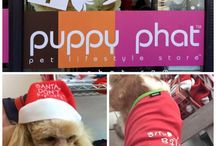 Pet Lifestyle Store- Dog Collars / Puppy Phat™ is committed to providing and sourcing fun, funky and chic practical products that provide warmth, safety and have a practical aspect to keep your fur child in the very best of style.Email Us admin@puppyphat.com. Call Us 03 9681 8642. Visit http://www.puppyphat.com/