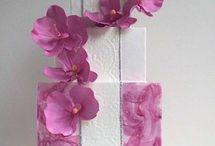 Dolci / Orchidea