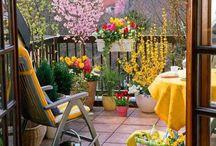 flowers balcony