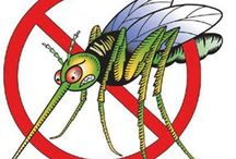Mosquito yard spray