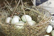 { baskets & bins } / by Erin Davis