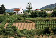 Greek Wine Articles