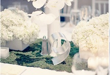 Teresa - Wedding  / A Turks Wedding