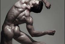 Anatomy men