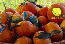 Agrumi biologici 100% certificati / Limoni, arance e mandarini biologici 100% certificati