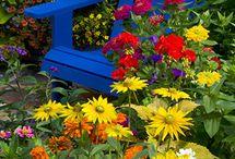 Summer Garden / Lots of ideas for the garden for the summer