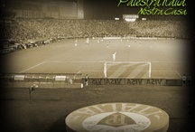 Palmeiras / Meu time do coração! / by Arlindo Ramos
