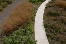 Y_great landscape architects