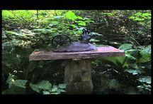 Landscape/Nature/Eco Art