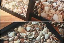 SEA Shell DIY