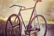 Bicycle / Fixed gear