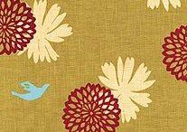 A Fold of Fabrics