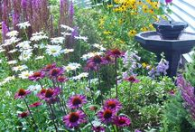 Gardens / by Elissa @Charonel Designs