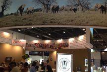 WTM 2014, conf & meetings