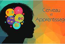 Apprentissage - Neurosciences