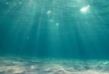 Under Water / Every image is of a view under the water.