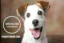 vidapetbook.com / Junte-se a nós!  Rede Social exclusiva dos bichinhos de estimação. www.vidapetbook.com