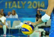 Volley2014
