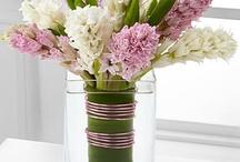 Hyacinths / Hyacinth arrangement ideas