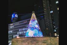 隠れミッキー。 a hidden Micky D'you find it? #christmastree #hiddenmickey #nightview #illustration #twinkle #隠れミッキー #クリスマスツリー #イルミネーション写真