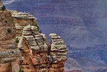 Arizona / by Davina Peebles