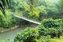 Tangkahan North Sumatra / Tourism Tangkahan