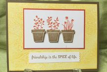 Stampin Up Gifts from the Garden / As a gardener, this is the perfect stamp set for me!!  I foresee many projects  from cards to scrapbook layouts!  I'm happy to answer any questions you may have about any of these projects. You can email me at amascio@comcast.net. Check out my blog at: www.stampwithanna.blogspot.com Shop with me at: http://www.stampinup.net/esuite/home/annamasciovecchio/