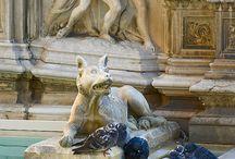Siena - magic city