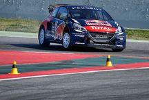 Team Peugeot Hansen
