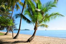 Tropical North Queensland / Daydreaming of Tropical North QLD, Where the rainforest meets the reef!