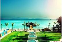 Sheraton Çesme Otel Resort&Spa / Eşsiz bir tatil deneyimi için Sheraton Çesme Otel Resort&Spa en iyi fiyatla Otel.com Türkiye'de!