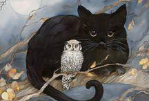 Kociokwik / Koty, kotki, koteczki
