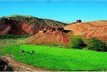 Sport Travel / Sport Travel c'est avant tout une équipe de professionnels passionnés du Maroc, de voyages, de rencontres, d'échanges, d'aventures et de sports ! De l'ensemble de ces éléments est née notre agence. Sport Travel c'est 35 permanents et plus de 100 personnes en saison qui préparent et encadrent vos voyages. Une équipe au siège, une compagnie des guides de montagne, des équipes terrains (montagne, centre équestre, centres sportifs bord de mer)