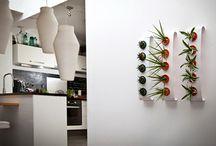 Flowerbox / Klasik ve alışılmış dekorasyon önerilerinin aksine Flowerbox yaşam alanınıza yenilik getiriyor.